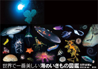 ゆうすけ書店 豪海堂:世界で一番美しい海のいきもの図鑑