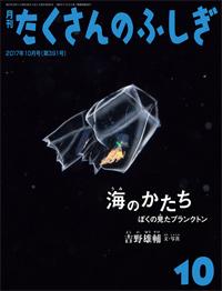 ゆうすけ書店 豪海堂:海のかたち ぼくの見たプランクトン