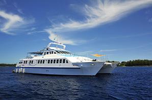 DayDream Cruise